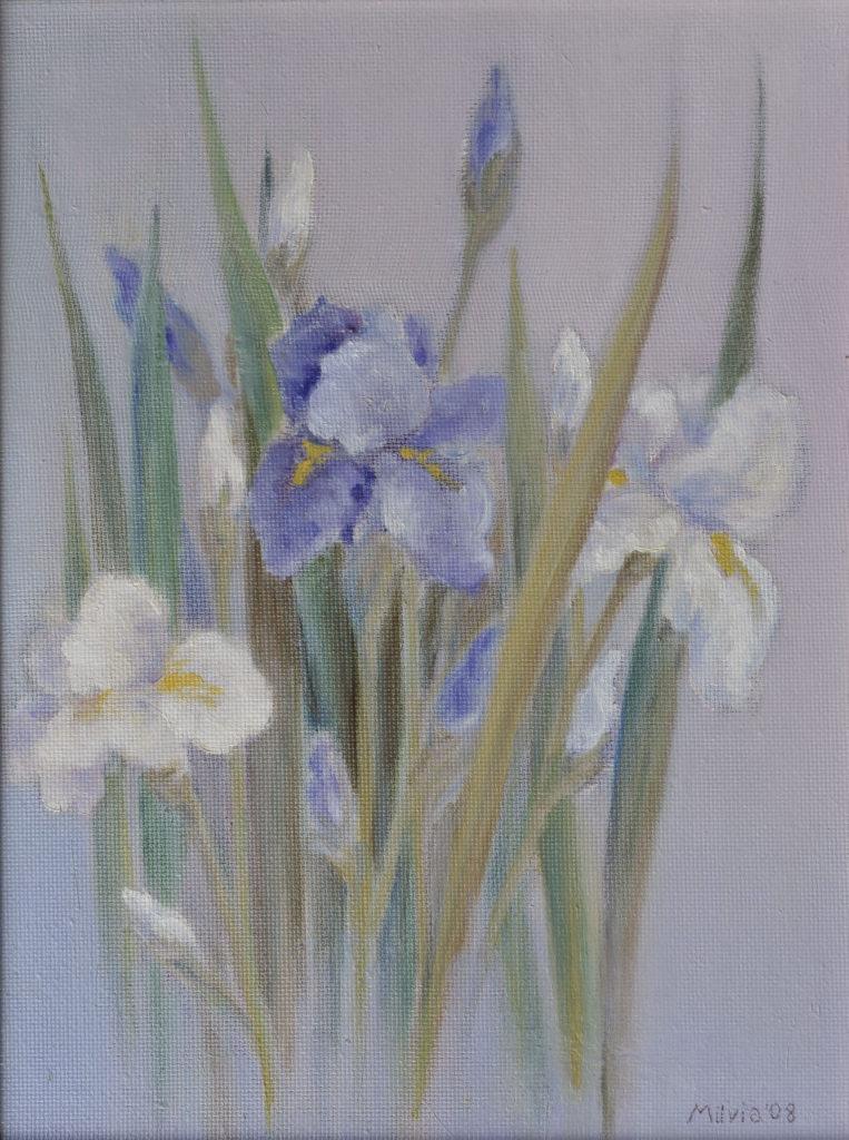 01 - iris bianchi e blu 40x29,5 2008