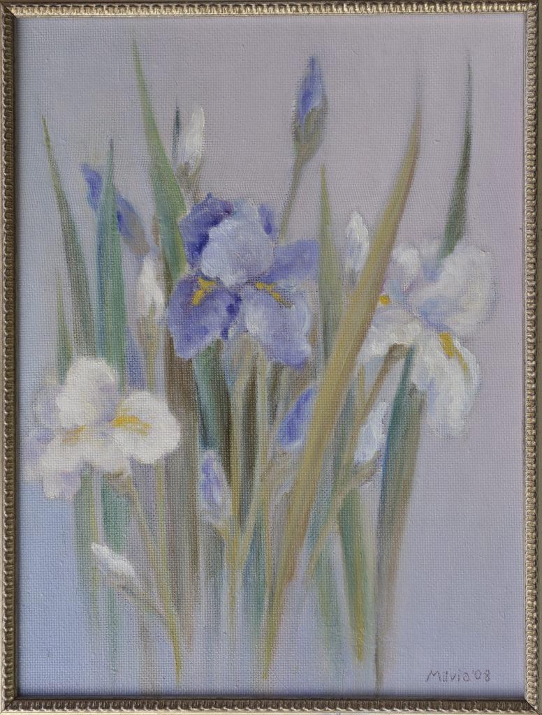 01 - iris bianchi e blu 40x29,5- 2008