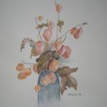 """""""Alchechengi e foglie secche"""", acquerello su carta, cm 48x36, 2016 400 €"""