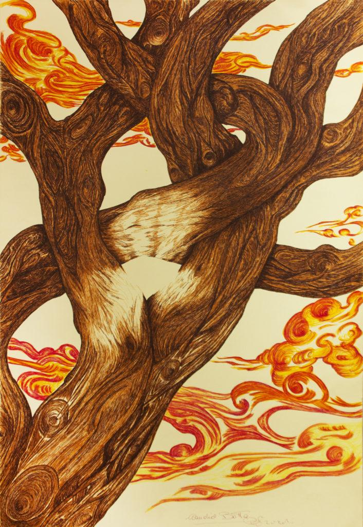 28. Primo piano di un platano, 50x70 (2016)
