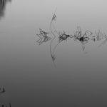 """""""Geometrie metafisiche"""", opera fotografica Fine Art su carta, cm 100x75, 2011 1.200 €"""