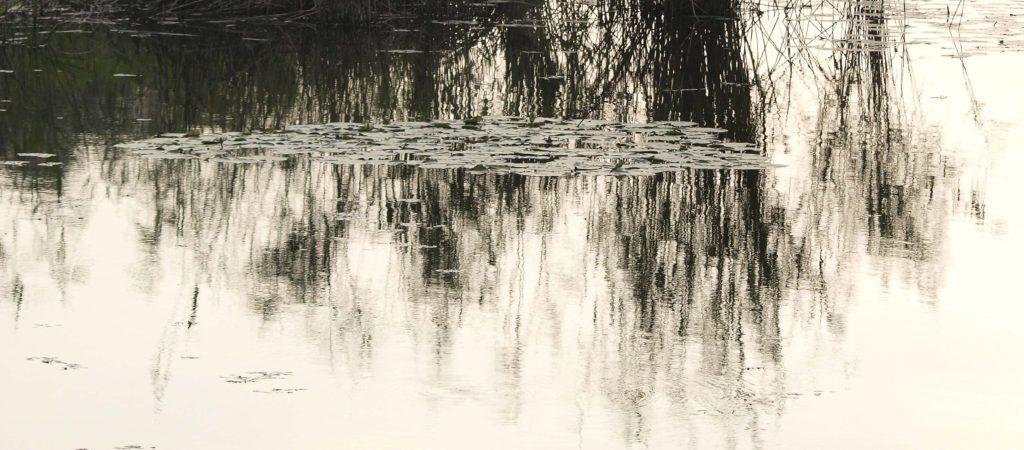Meditazione 2017opera fotografica Fine Art su carta cm. 120 x 60