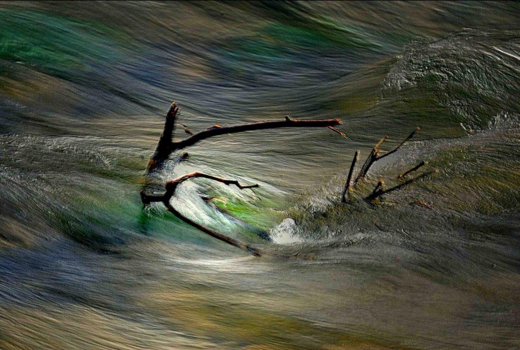Nel vortice della vita 2016 opera fotografica Fine Art su carta cm. 140 x 100