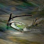 """""""Nel  vortice  della  vita"""", opera fotografica Fine Art su carta, cm  140x100, 2016 2.100 €"""
