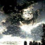 """""""Ophelia omaggio a Odilon Redon"""", opera fotografica Fine Art su carta cotone, cm 120x80, 2015 1.800 €"""