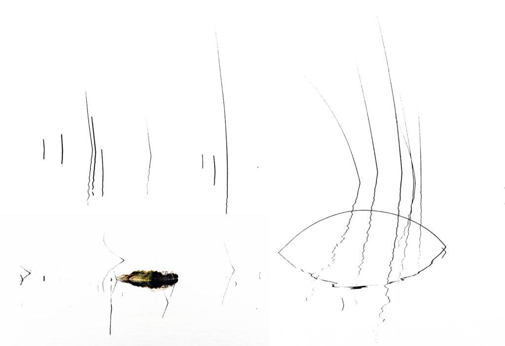 Orme silenti 2017opera fotografica Fine Art su carta cm.120 x 80