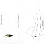 """Orme silenti"", opera fotografica Fine Art su carta, cm 120x80, 2017 1.800 €"