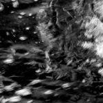 ''Spiriti  vaganti', opera fotografica ai sali d'argento, cm 90x120, 2012 1.400 €
