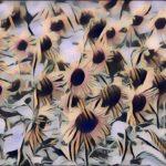 """Champ de tournesol"", fotografia digitale naturale + effetto Pop Art, cm 20x30, 30x40, 40x50, 50x70, 2017"