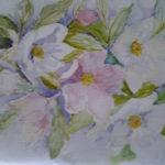 """Ellebori"", acquerello su carta, cm 28x40, 2016 400 €"