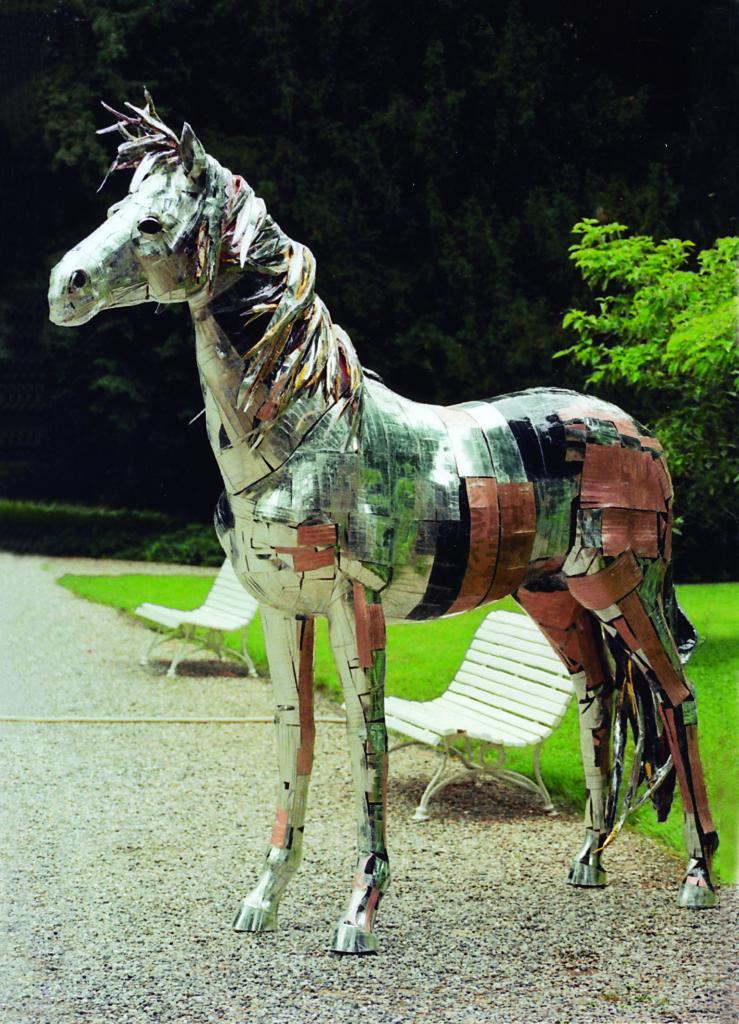 10)cavallo argento rivalta 2012
