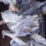 'Stormo di colombi', particolare, Plasticone, cm 60x15x50 cad. , 2007   € 370