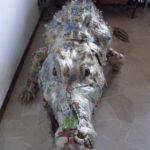 'Coccodrillo', Plasticone, 320x100x50, 2001   € 16.400