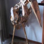 'Marabù', scultura in materiale ligneo, Plasticone, cm 95x60x60, 2006   € 1.800