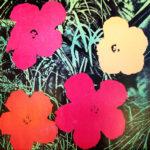 Andy Warhol 'Flowers' esemplare 089 su carta, 1964